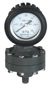 YTP-100S,YTP-75S全塑隔膜压力表,耐强腐压力表
