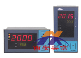 DY21TR1东辉大延牌定时器DY2000(TR)