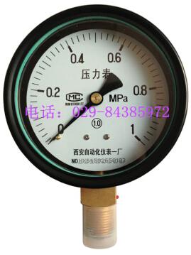 Y-100普通精密压力表 (精度等级1.0级)