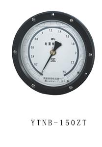 YTNB-150ZT 抗震精密 压力表
