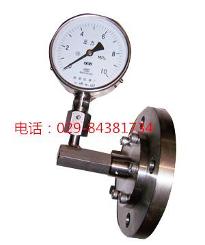 西仪压力表YTPF-100 YTPF-150全不锈钢耐腐隔膜压力表