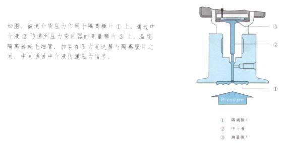 隔膜式压力变送器 SWP-T(201-204)系列
